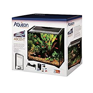 Top 15 Best Fish Tanks in 2019 - Complete Guide