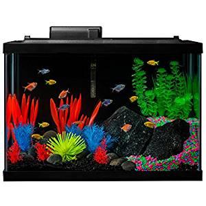 Pet Supplies Aquariums & Tanks Capable Biorb Flow 30l Aquarium Fish Tank With Ornaments And Extras Distinctive For Its Traditional Properties