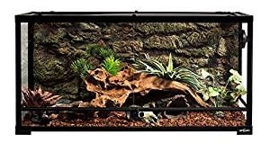 Top 15 Best Reptile Terrariums In 2019 Complete Guide