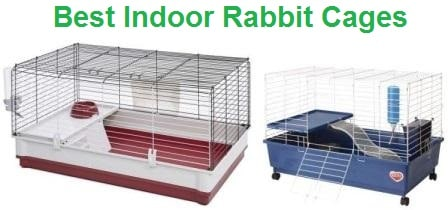 Top 15 Best Indoor Rabbit Cages In 2020