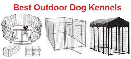 Top 15 Best Outdoor Dog Kennels in 2019