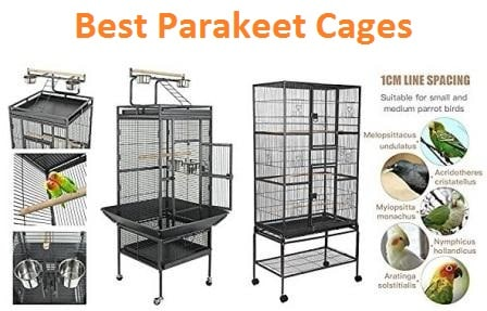 Top 15 Best Parakeet Cages in 2019 - Ultimate Guide