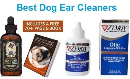 Clean Dog Ears Vinegar And Alcohol