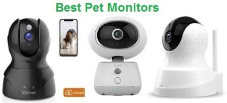 Top 15 Best Pet Monitors in 2019 - Complete Guide